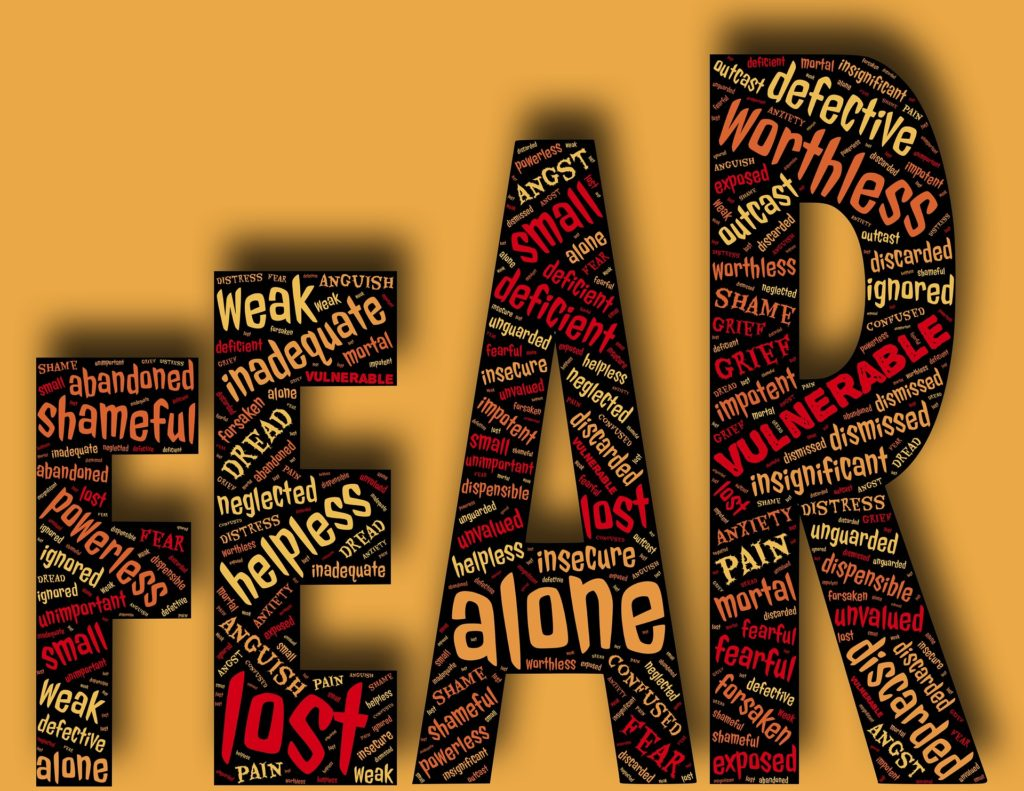 vulnerability and fear word cloud graphic